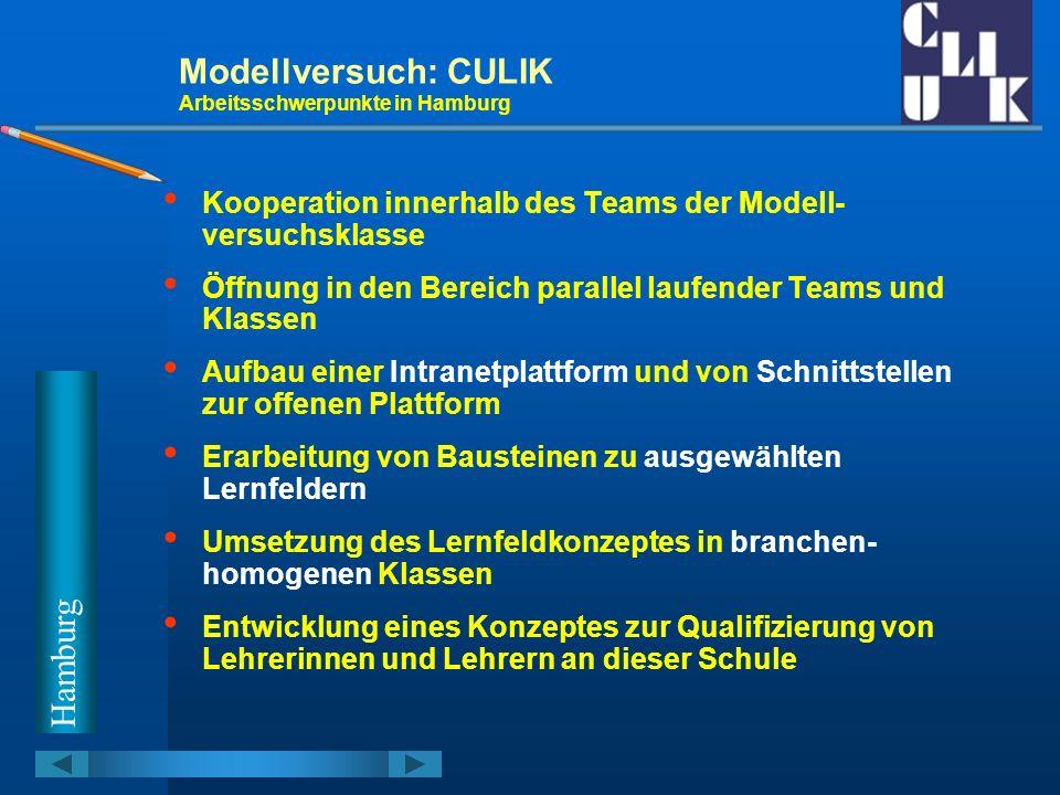 Modellversuch: CULIK Arbeitsschwerpunkte in Hamburg Kooperation innerhalb des Teams der Modell- versuchsklasse Öffnung in den Bereich parallel laufend