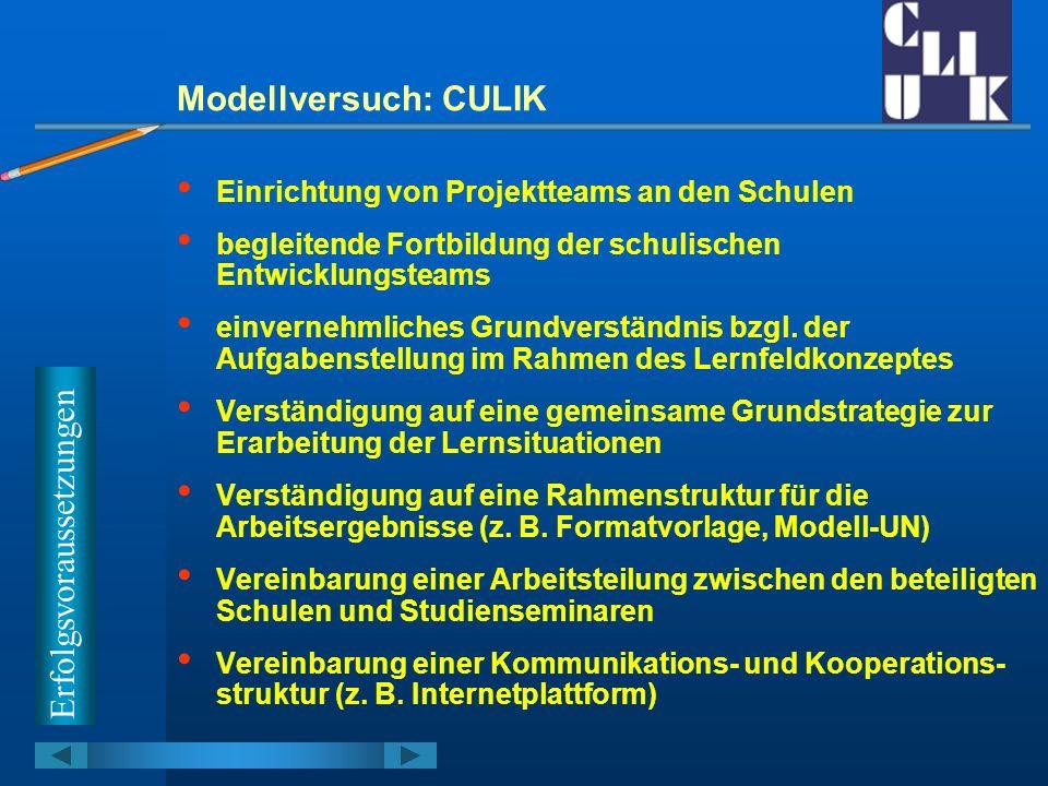 Modellversuch: CULIK Arbeitsvereinbarungen vom 8.