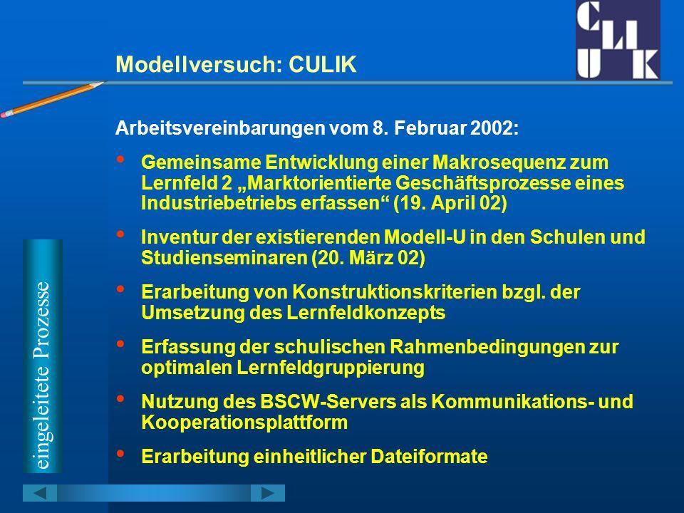 Modellversuch: CULIK Arbeitsvereinbarungen vom 8. Februar 2002: Gemeinsame Entwicklung einer Makrosequenz zum Lernfeld 2 Marktorientierte Geschäftspro