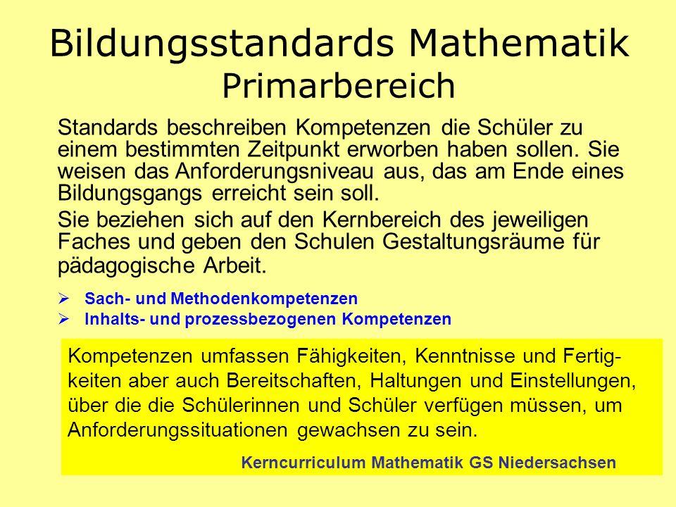 Standards beschreiben Kompetenzen die Schüler zu einem bestimmten Zeitpunkt erworben haben sollen. Sie weisen das Anforderungsniveau aus, das am Ende