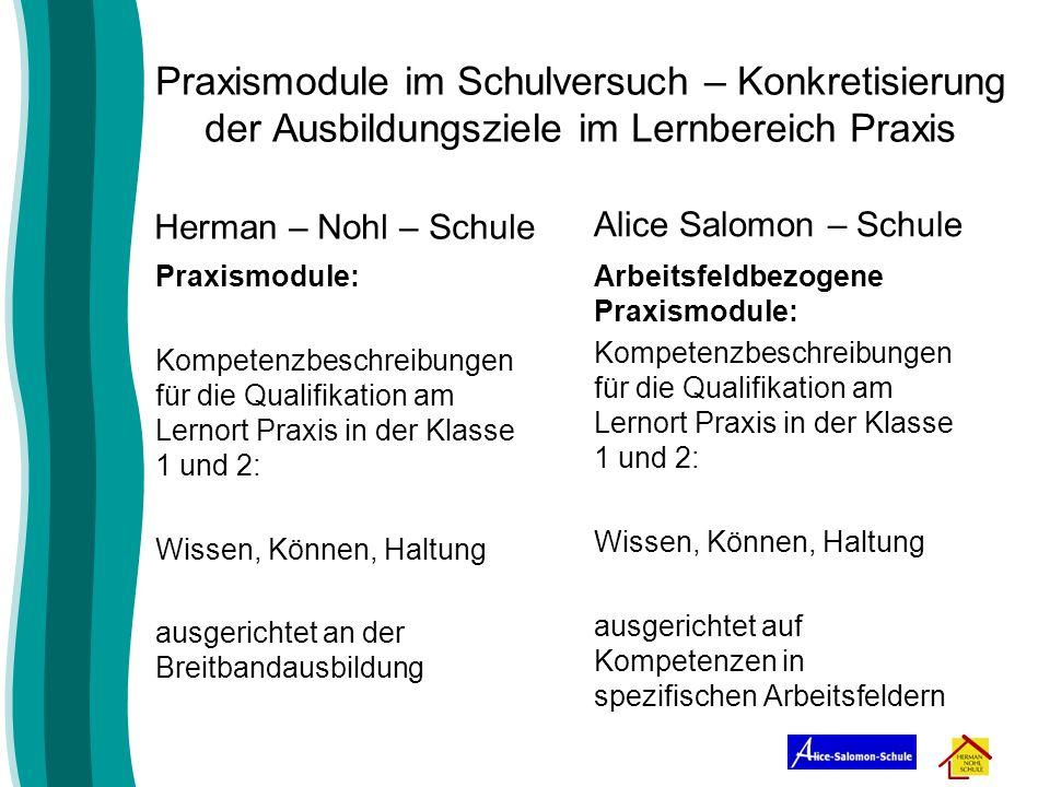 Praxismodule im Schulversuch – Konkretisierung der Ausbildungsziele im Lernbereich Praxis Herman – Nohl – Schule Praxismodule: Kompetenzbeschreibungen