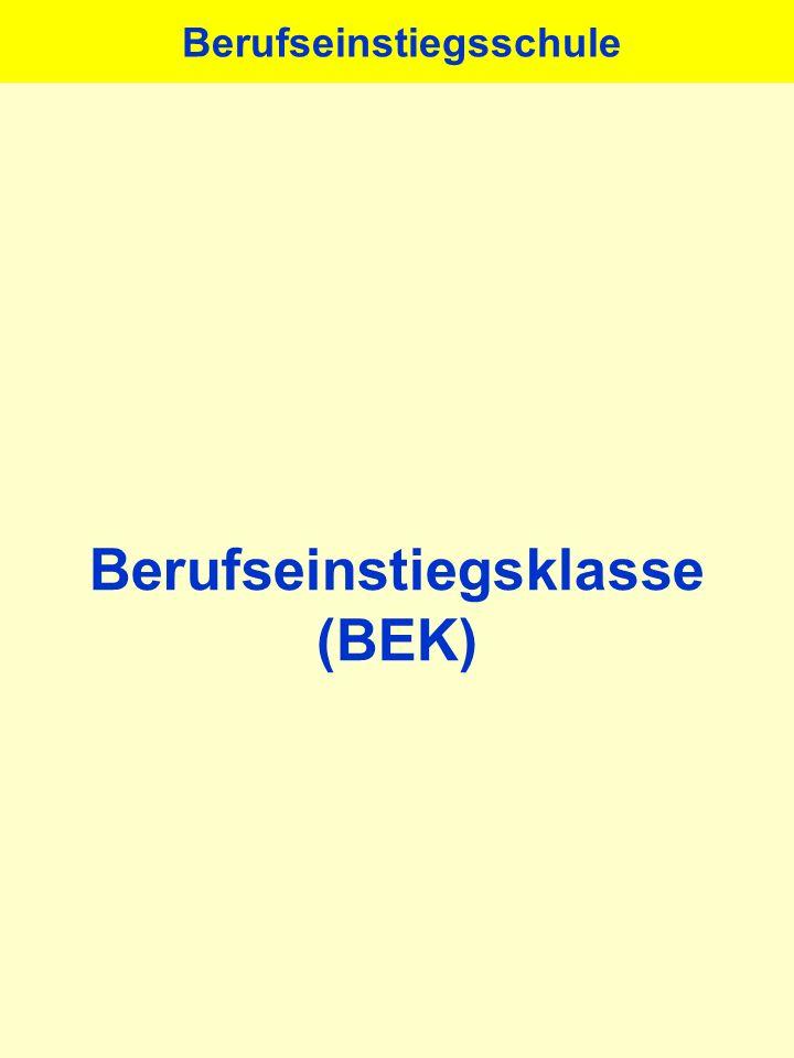 Berufseinstiegsklasse (BEK) Berufseinstiegsschule