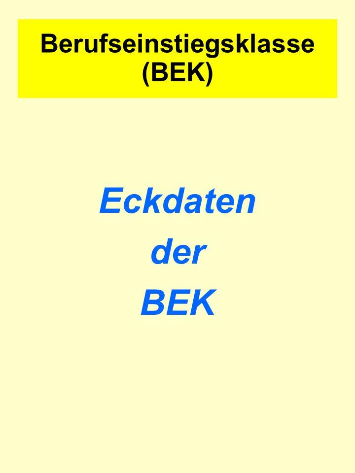 Eckdaten der BEK Berufseinstiegsklasse (BEK)