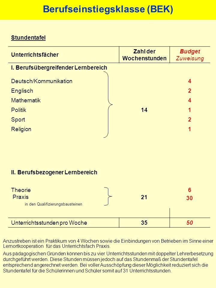 Wissenschaftliche Begleitung Leibniz Universität Hannover, Institut für Berufspädagogik, - Fachgebiet Sozialpädagogik -, Prof.