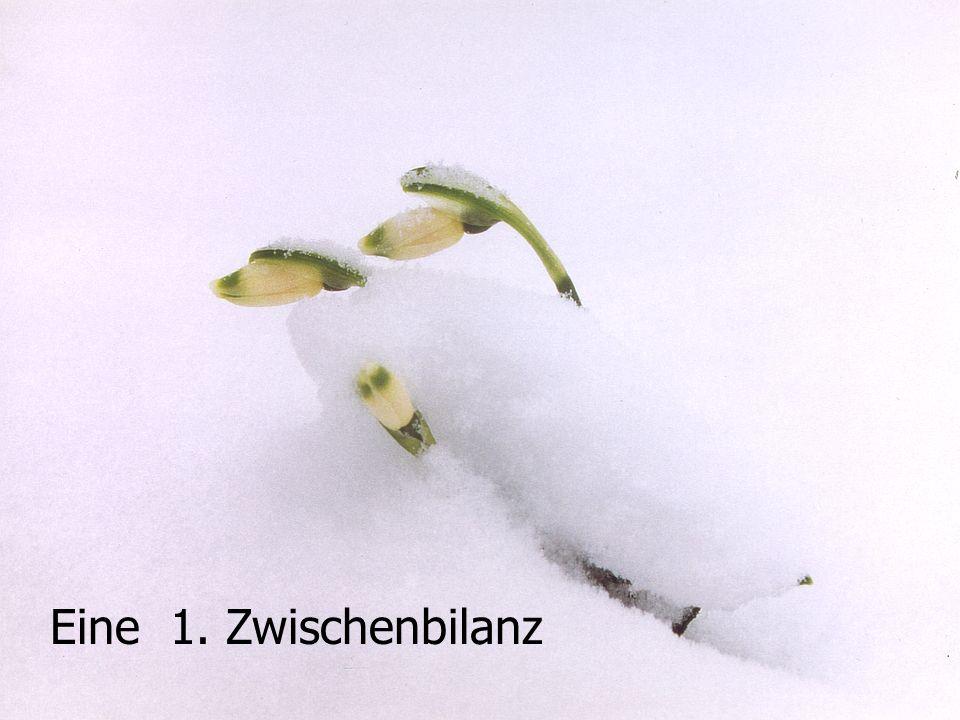 Meilenstein - Tagung Loccum 17. und 18. Dezember 2002