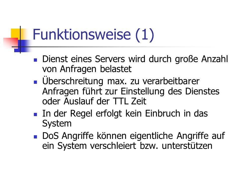 Funktionsweise (1) Dienst eines Servers wird durch große Anzahl von Anfragen belastet Überschreitung max. zu verarbeitbarer Anfragen führt zur Einstel