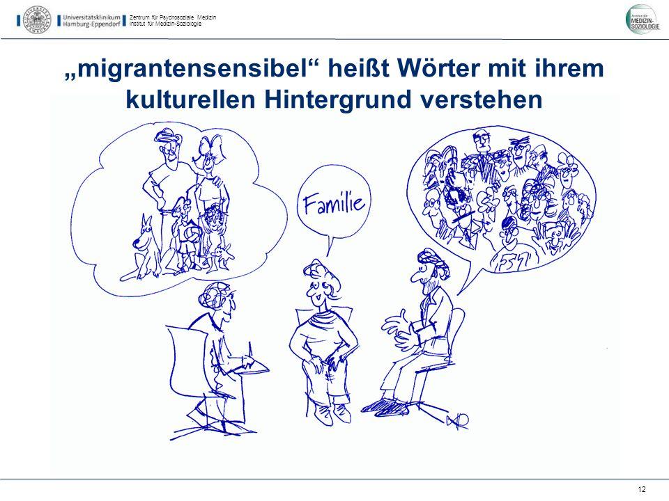 Zentrum für Psychosoziale Medizin Institut für Medizin-Soziologie 12 migrantensensibel heißt Wörter mit ihrem kulturellen Hintergrund verstehen
