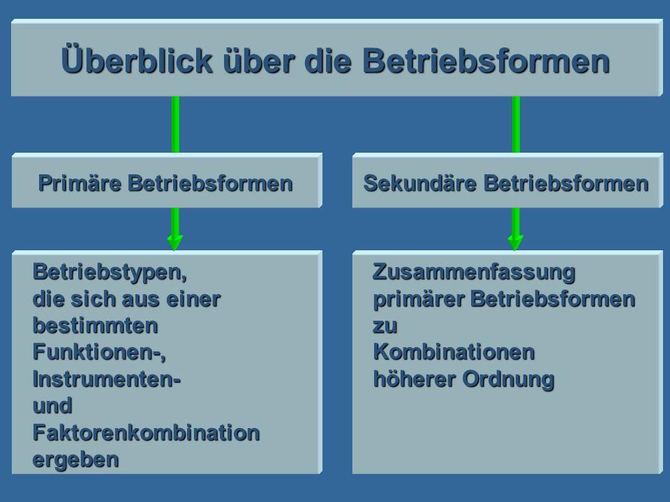 Betriebstypen, die sich aus einer bestimmtenFunktionen-,Instrumenten-undFaktorenkombinationergebenZusammenfassung primärer Betriebsformen zuKombinatio