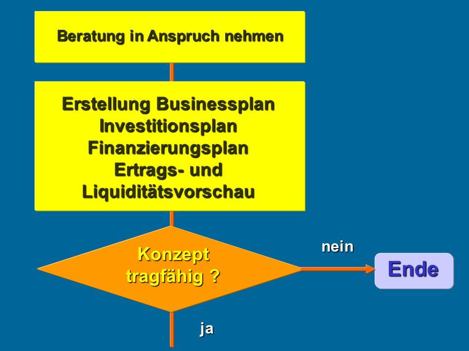 Beratung in Anspruch nehmen ja nein Ende Erstellung Businessplan Investitionsplan Finanzierungsplan Ertrags- und Liquiditätsvorschau Konzept tragfähig