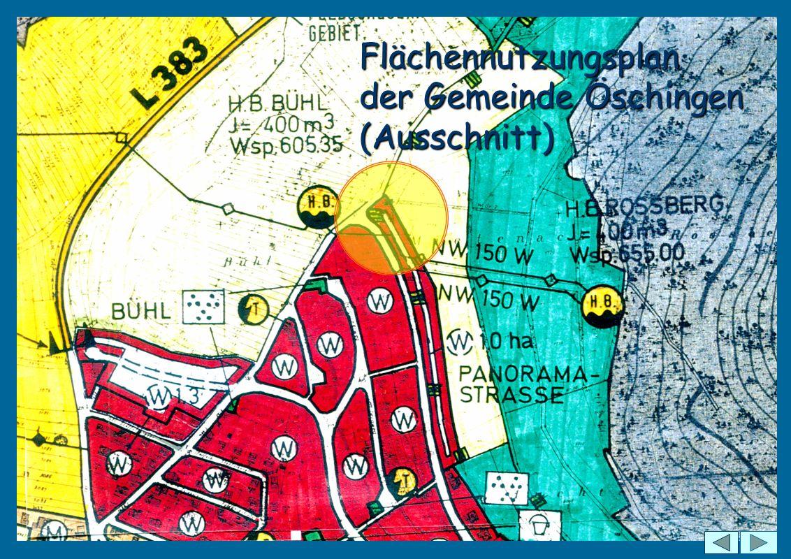Flächennutzungsplan der Gemeinde Öschingen (Ausschnitt)