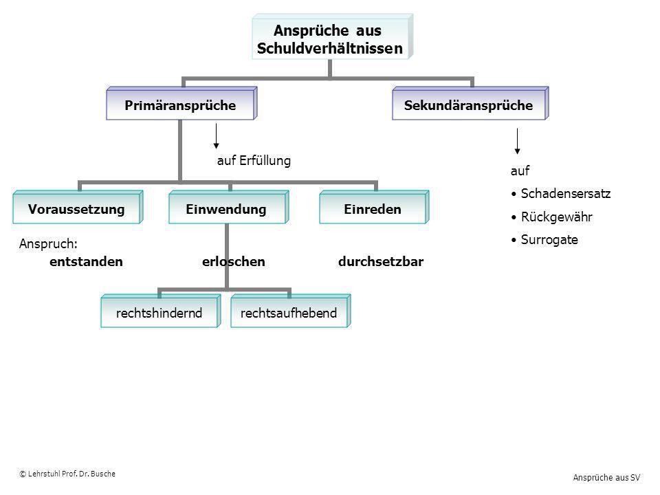 Ansprüche aus SV © Lehrstuhl Prof. Dr. Busche Ansprüche aus Schuldverhältnissen Primäransprüche VoraussetzungEinwendung rechtshindernd rechtsaufhebend