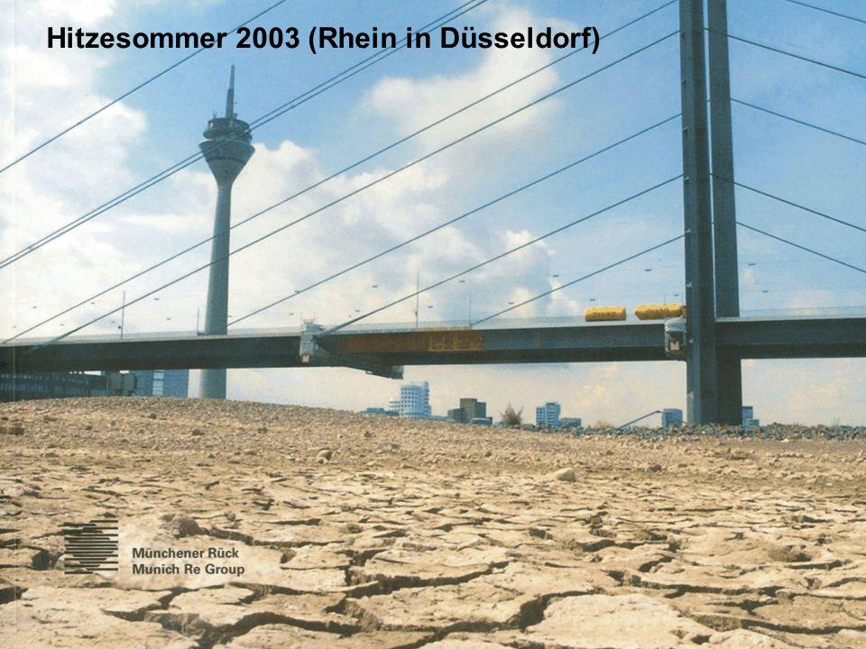 Hitzesommer 2003 (Rhein in Düsseldorf)