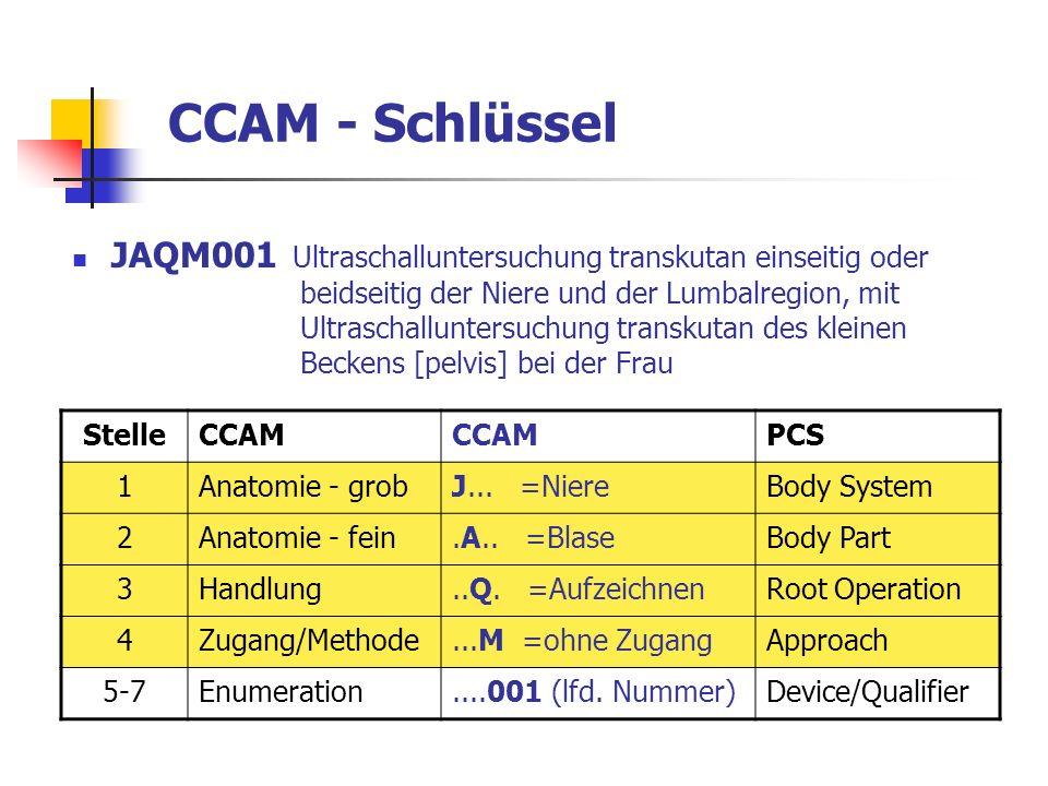 CCAM - Schlüssel JAQM001 Ultraschalluntersuchung transkutan einseitig oder beidseitig der Niere und der Lumbalregion, mit Ultraschalluntersuchung tran