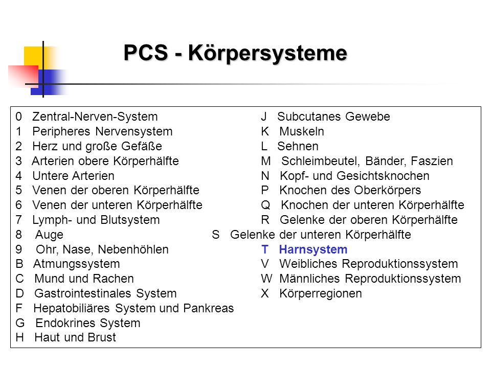 PCS - Körpersysteme 0 Zentral-Nerven-SystemJ Subcutanes Gewebe 1 Peripheres NervensystemK Muskeln 2 Herz und große GefäßeL Sehnen 3 Arterien obere Kör