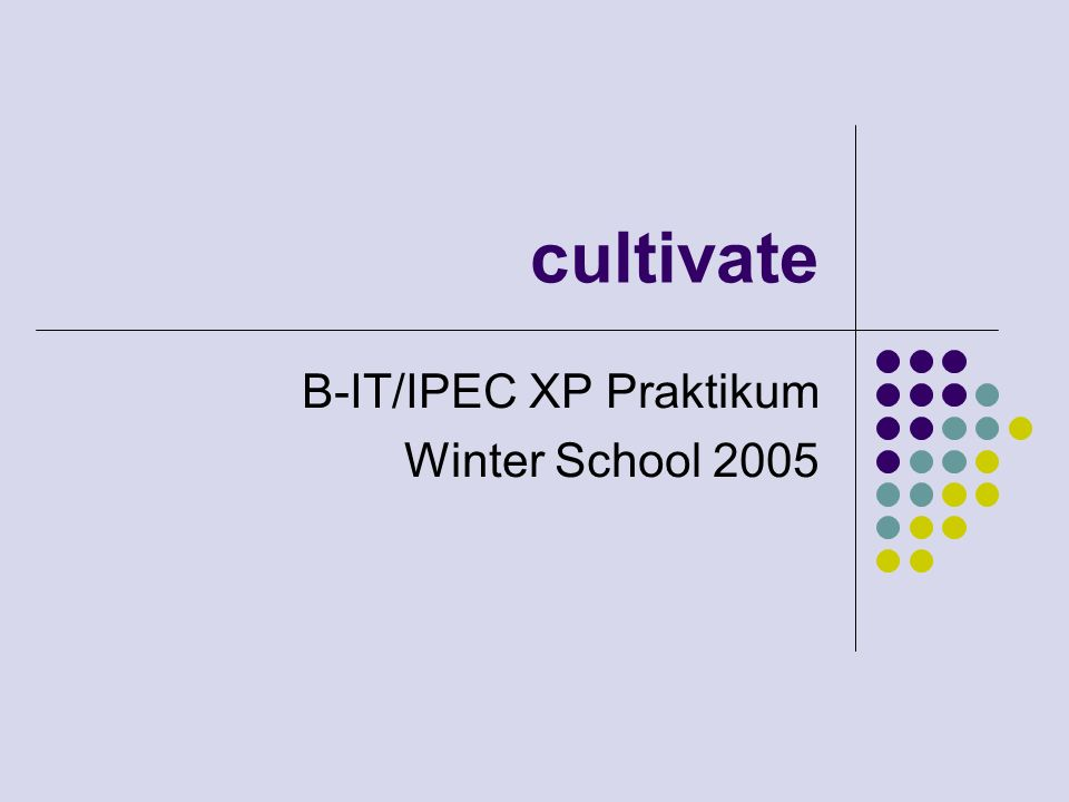 cultivate B-IT/IPEC XP Praktikum Winter School 2005