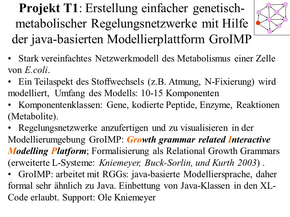 Projekt T1: Erstellung einfacher genetisch- metabolischer Regelungsnetzwerke mit Hilfe der java-basierten Modellierplattform GroIMP Stark vereinfachte