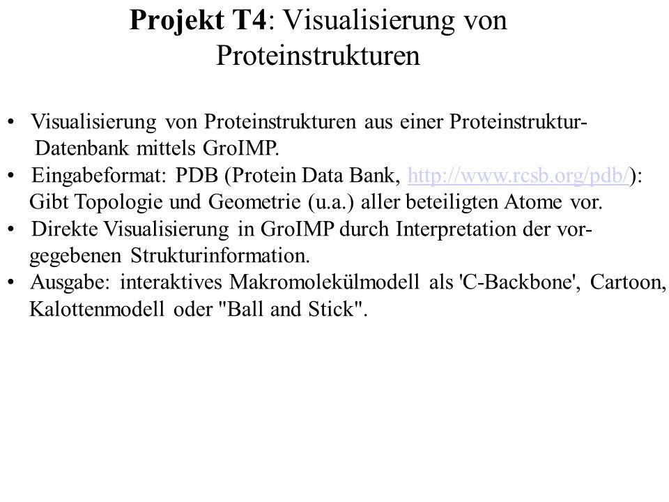 Projekt T4: Visualisierung von Proteinstrukturen Visualisierung von Proteinstrukturen aus einer Proteinstruktur- Datenbank mittels GroIMP. Eingabeform