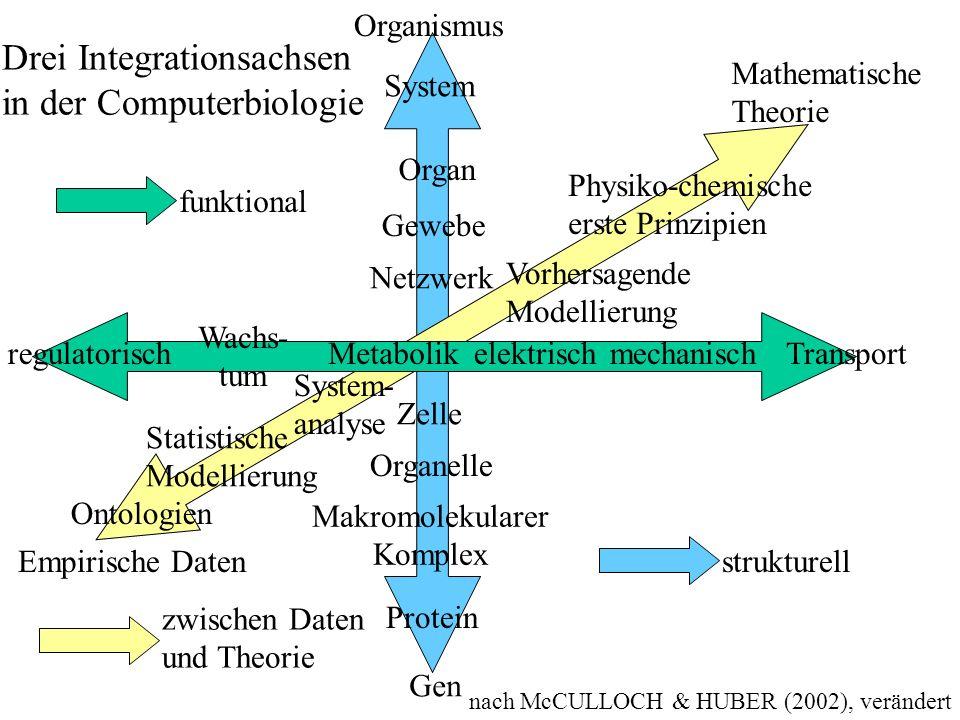 nach McCULLOCH & HUBER (2002), verändert Gen Protein Makromolekularer Komplex Organelle Zelle Netzwerk Gewebe Organ System Organismus Empirische Daten