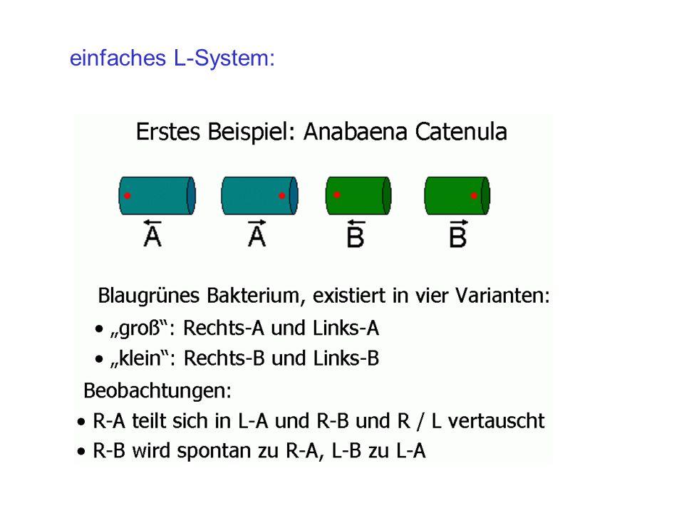 einfaches L-System: