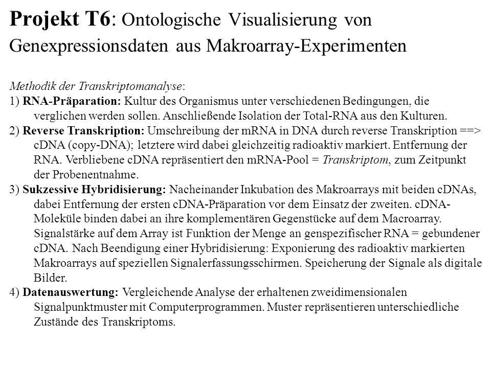 Projekt T6: Ontologische Visualisierung von Genexpressionsdaten aus Makroarray-Experimenten Methodik der Transkriptomanalyse: 1) RNA-Präparation: Kultur des Organismus unter verschiedenen Bedingungen, die verglichen werden sollen.