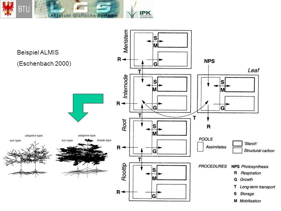 Beispiel ALMIS (Eschenbach 2000)