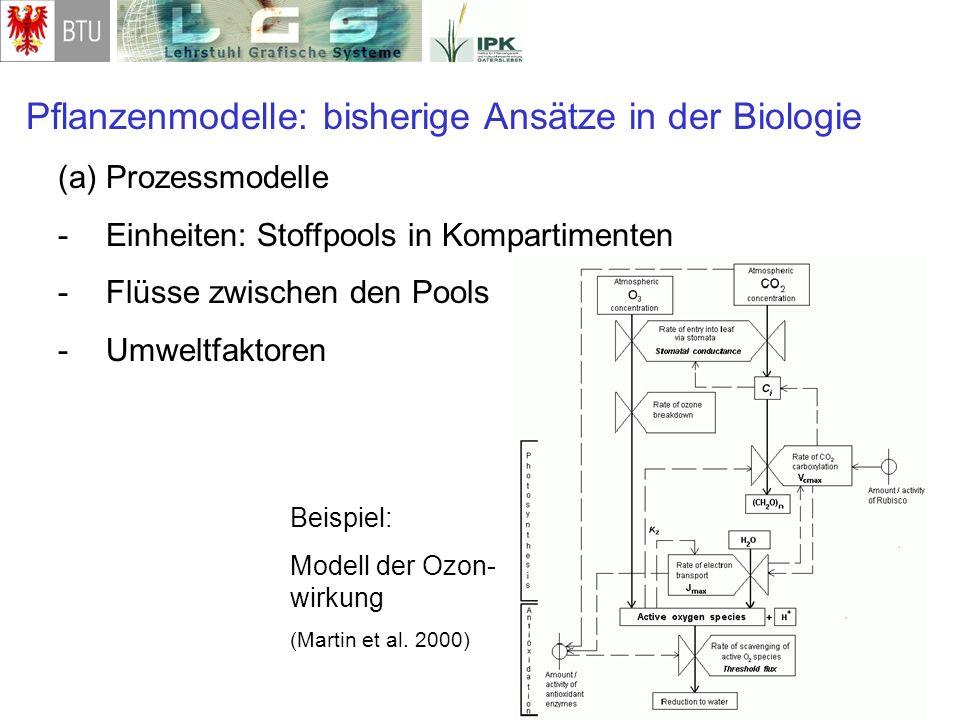 Pflanzenmodelle: bisherige Ansätze in der Biologie (a)Prozessmodelle -Einheiten: Stoffpools in Kompartimenten -Flüsse zwischen den Pools -Umweltfaktor