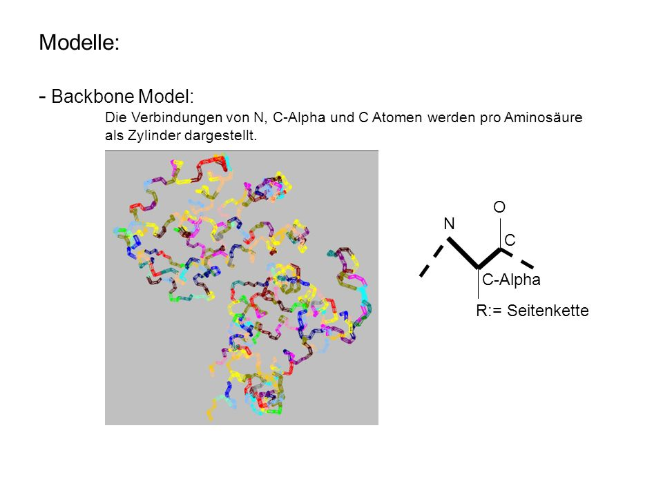 Modelle: - Ball and Stick Model: die Atome (balls) werden alle mit ihren Bindungen (sticks), die je Aminosäure spezifisch ist, im 3D-Raum dargestellt.