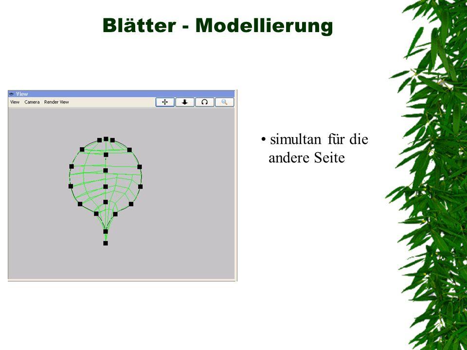 Blätter - Modellierung simultan für die andere Seite