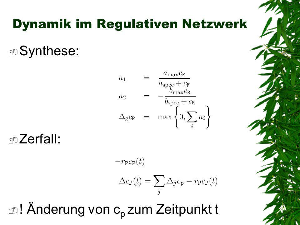 Dynamik im Regulativen Netzwerk Synthese: Zerfall: ! Änderung von c p zum Zeitpunkt t