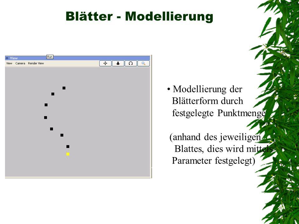 Blätter - Modellierung Modellierung der Blätterform durch festgelegte Punktmenge (anhand des jeweiligen Blattes, dies wird mittels Parameter festgeleg