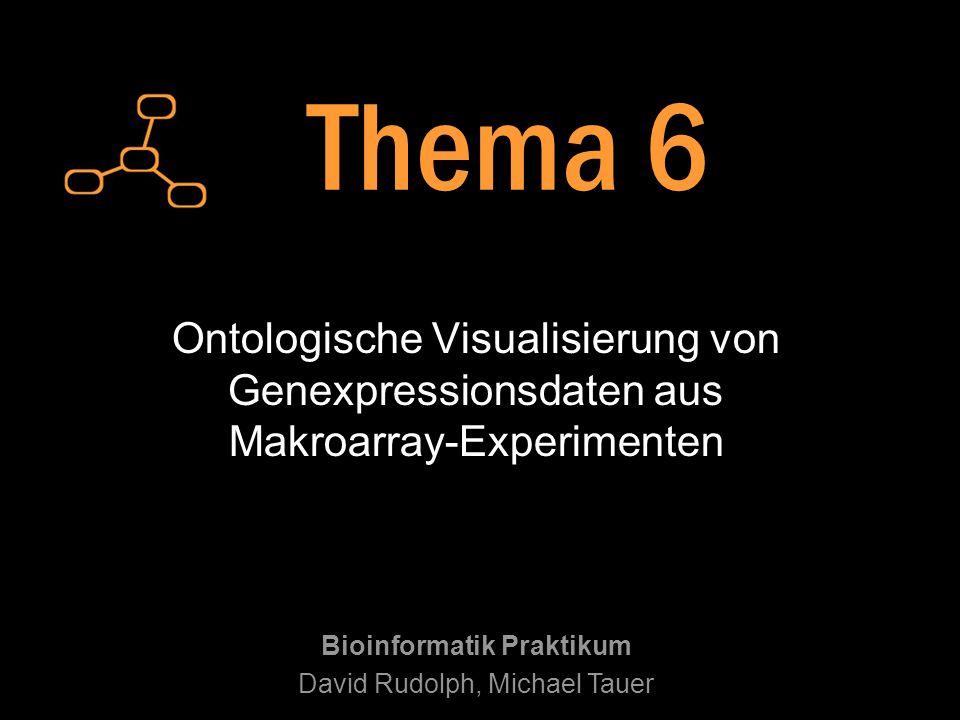 Ontologische Visualisierung von Genexpressionsdaten aus Makroarray-Experimenten Bioinformatik Praktikum David Rudolph, Michael Tauer Thema 6