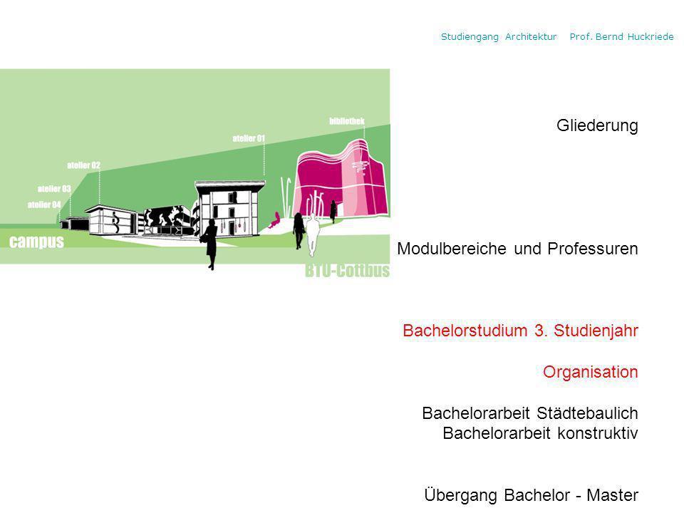 Gliederung Modulbereiche und Professuren Bachelorstudium 3.