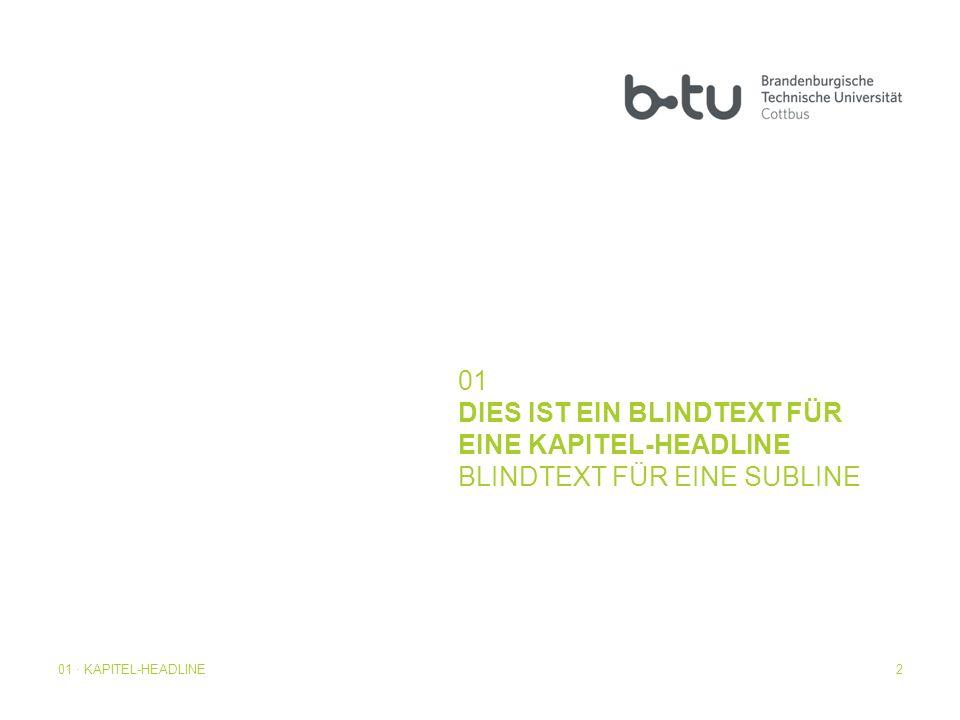 01 · KAPITEL-HEADLINE2 01 DIES IST EIN BLINDTEXT FÜR EINE KAPITEL-HEADLINE BLINDTEXT FÜR EINE SUBLINE
