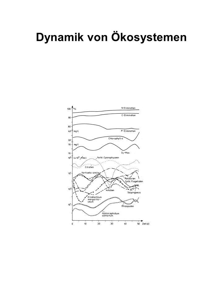 Dynamik von Ökosystemen