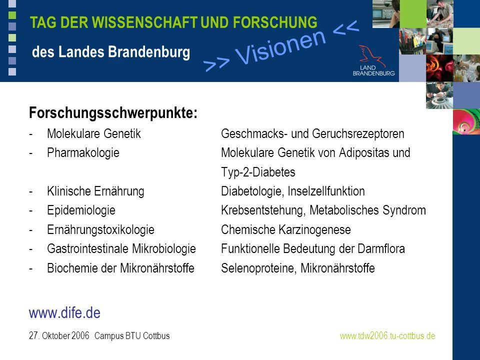 >> Visionen << www.tdw2006.tu-cottbus.de TAG DER WISSENSCHAFT UND FORSCHUNG des Landes Brandenburg 27. Oktober 2006 Campus BTU Cottbus Forschungsschwe