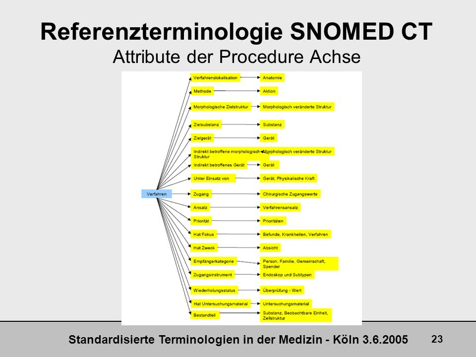 Standardisierte Terminologien in der Medizin - Köln 3.6.2005 23 Referenzterminologie SNOMED CT Attribute der Procedure Achse