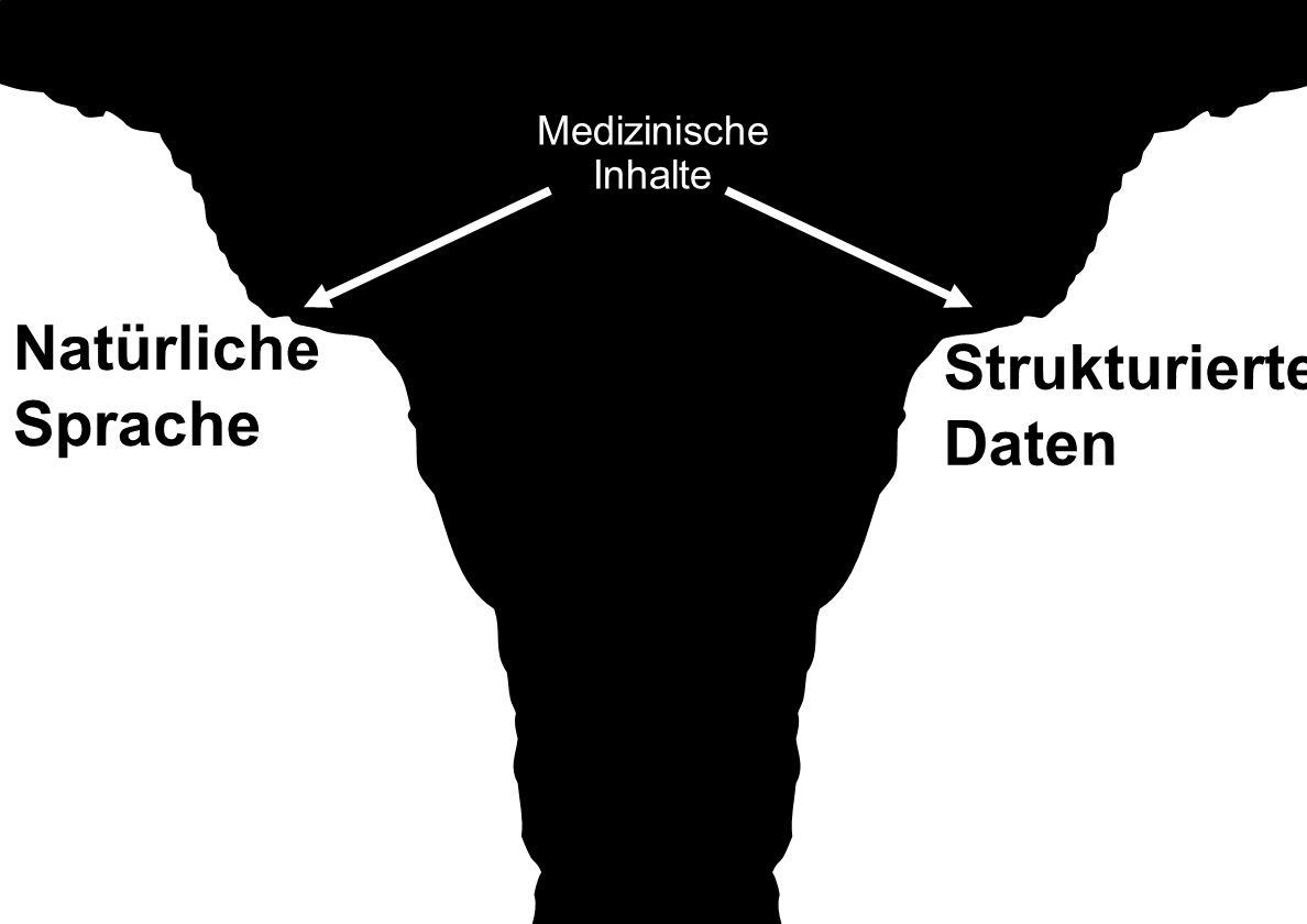 Medizinische Inhalte Natürliche Sprache Strukturierte Daten