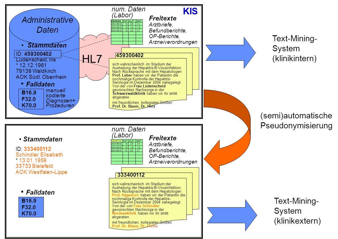 HL7 sich wahrscheinlich im Stadium der Ausheilung der Hepatitis-B-Virusinfektion. Nach Rücksprache mit dem Hepatologen Prof. Leber haben wir der Patie