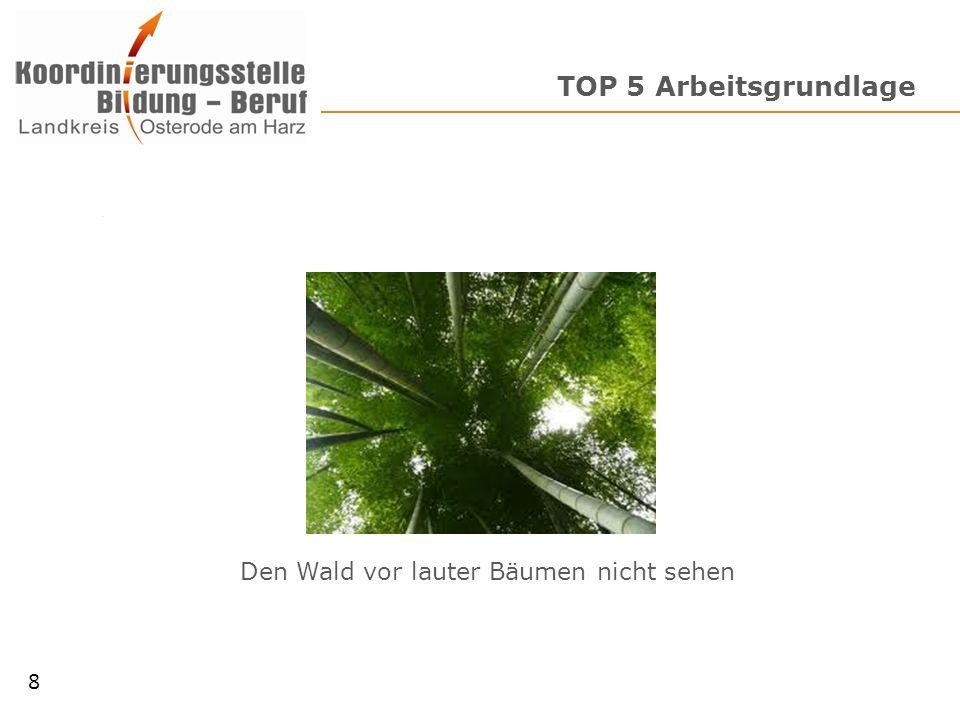 TOP 5 Arbeitsgrundlage Den Wald vor lauter Bäumen nicht sehen 8