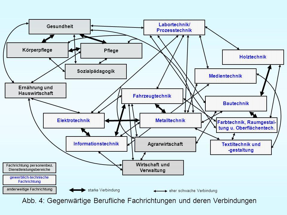 Abb. 4: Gegenwärtige Berufliche Fachrichtungen und deren Verbindungen Elektrotechnik Metalltechnik Gesundheit Körperpflege Pflege Sozialpädagogik Ernä