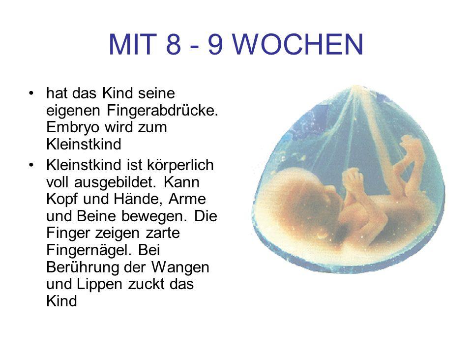 MIT 8 - 9 WOCHEN hat das Kind seine eigenen Fingerabdrücke. Embryo wird zum Kleinstkind Kleinstkind ist körperlich voll ausgebildet. Kann Kopf und Hän