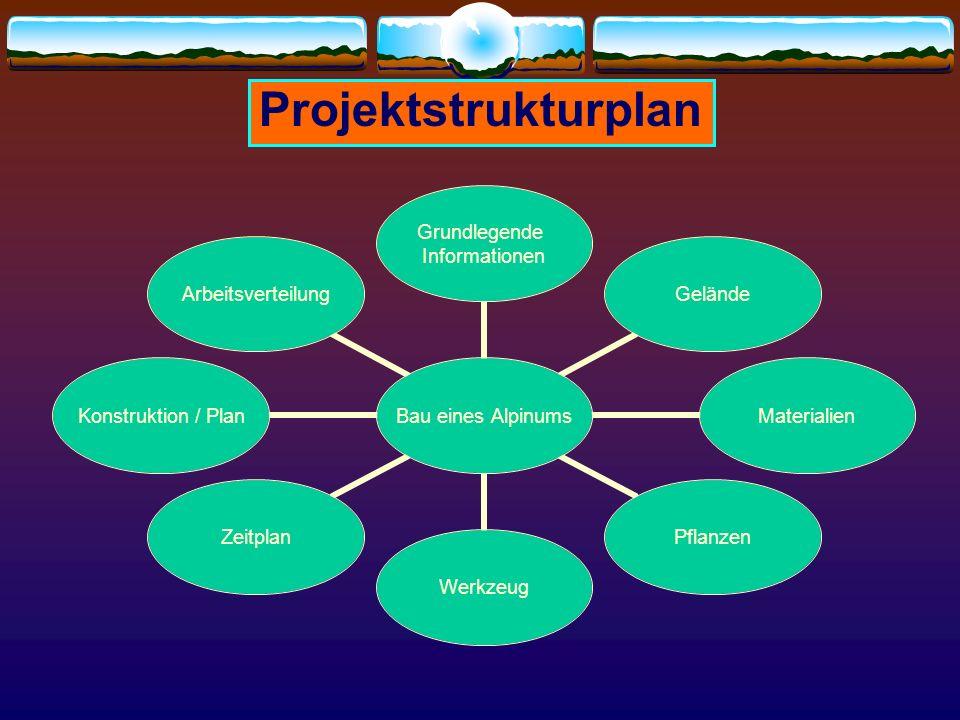 Projektstrukturplan Bau eines Alpinums Grundlegende Informationen GeländeMaterialienPflanzenWerkzeugZeitplan Konstruktion / Plan Arbeitsverteilung