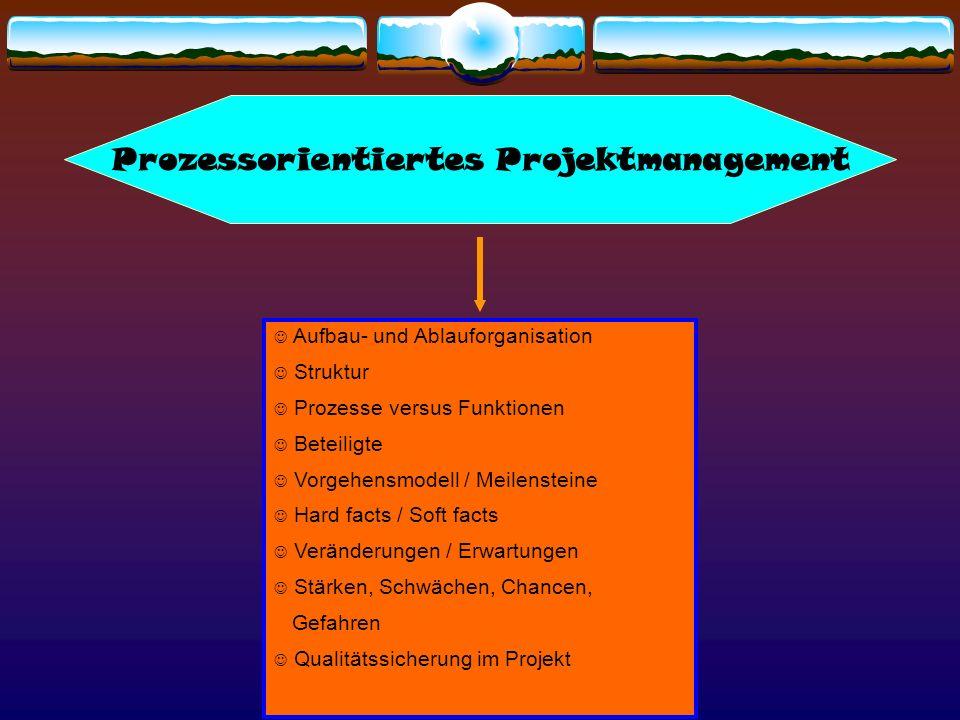Aufbau- und Ablauforganisation Struktur Prozesse versus Funktionen Beteiligte Vorgehensmodell / Meilensteine Hard facts / Soft facts Veränderungen / E