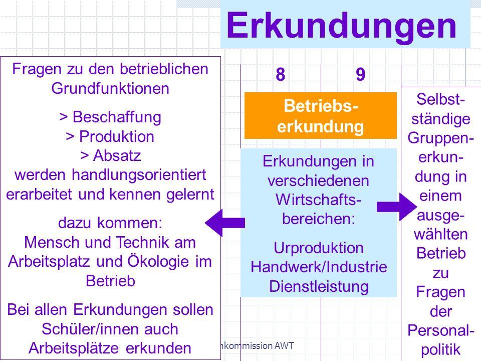 April 2004Lehrplankommission AWT31 Erkundungen Betriebs- erkundung Erkundungen in verschiedenen Wirtschafts- bereichen: Urproduktion Handwerk/Industri
