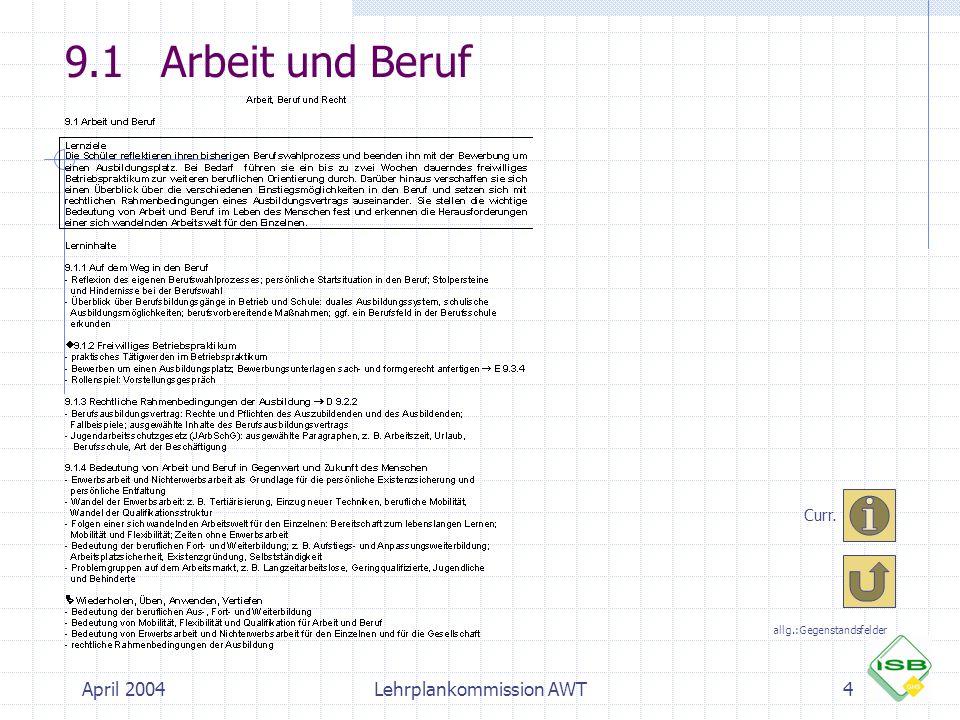 April 2004Lehrplankommission AWT4 9.1Arbeit und Beruf Curr. allg.:Gegenstandsfelder