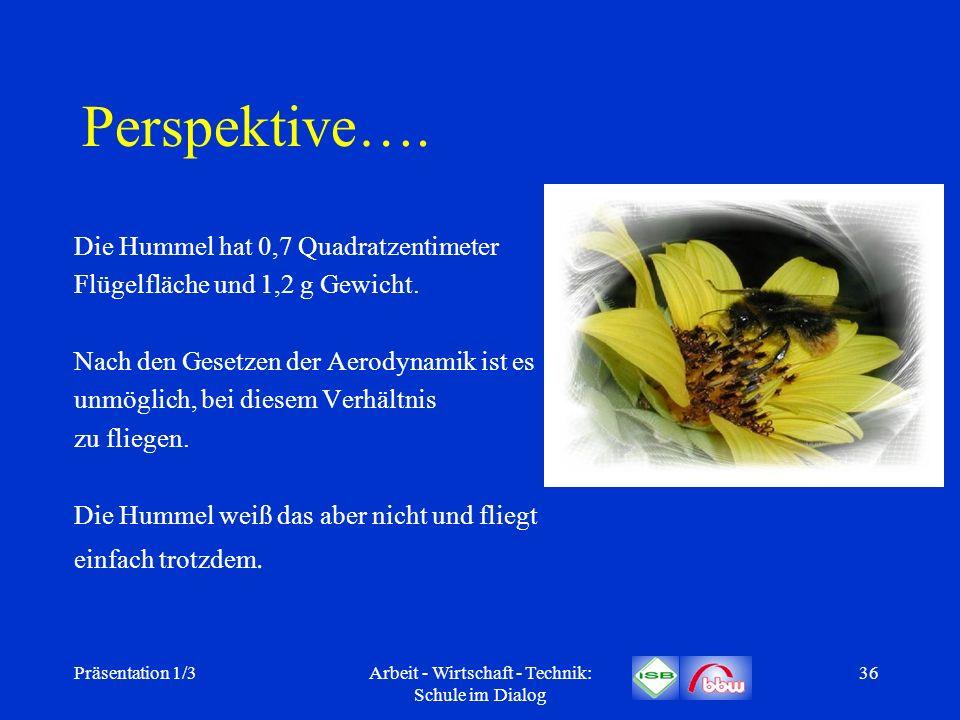 Präsentation 1/3Arbeit - Wirtschaft - Technik: Schule im Dialog 36 Perspektive…. Die Hummel hat 0,7 Quadratzentimeter Flügelfläche und 1,2 g Gewicht.