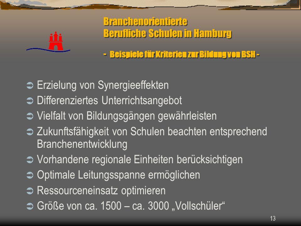 13 Branchenorientierte Berufliche Schulen in Hamburg - Beispiele für Kriterien zur Bildung von BSH - Erzielung von Synergieeffekten Differenziertes Un