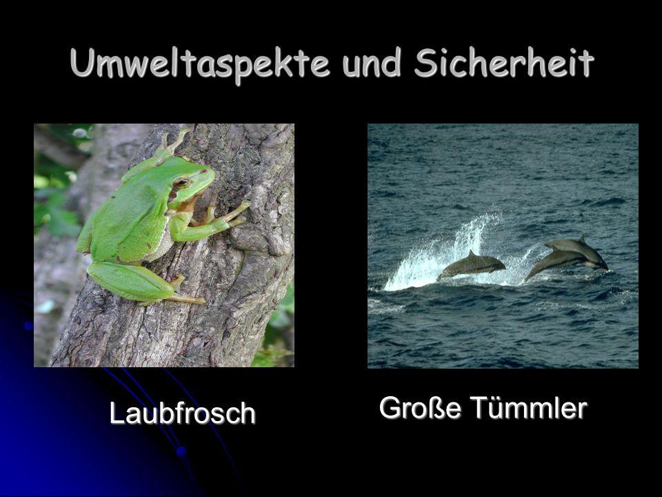 Umweltaspekte und Sicherheit Laubfrosch Laubfrosch Große Tümmler