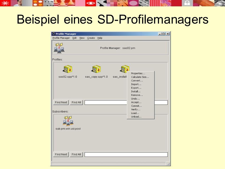 Beispiel eines SD-Profilemanagers