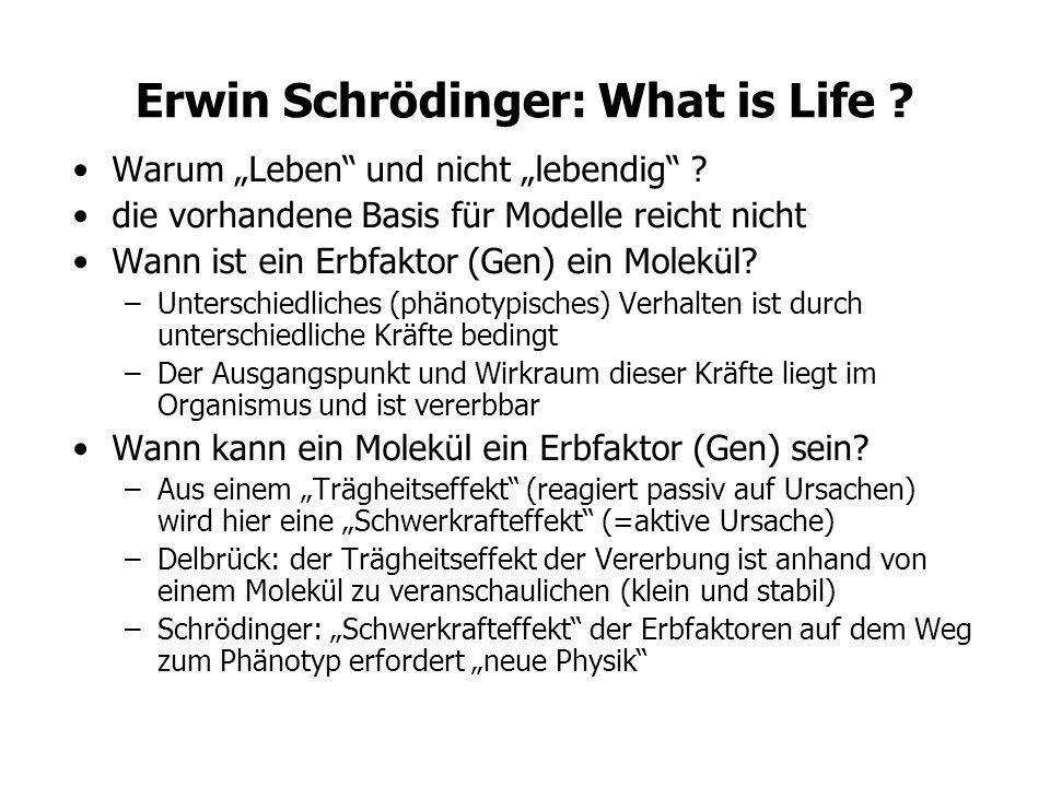 Erwin Schrödinger: What is Life ? Warum Leben und nicht lebendig ? die vorhandene Basis für Modelle reicht nicht Wann ist ein Erbfaktor (Gen) ein Mole